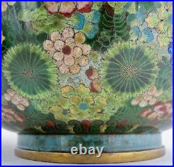 11.6 Vintage Chinese Green & Black Cloisonne Vase with Celestial DRAGONS & Stand